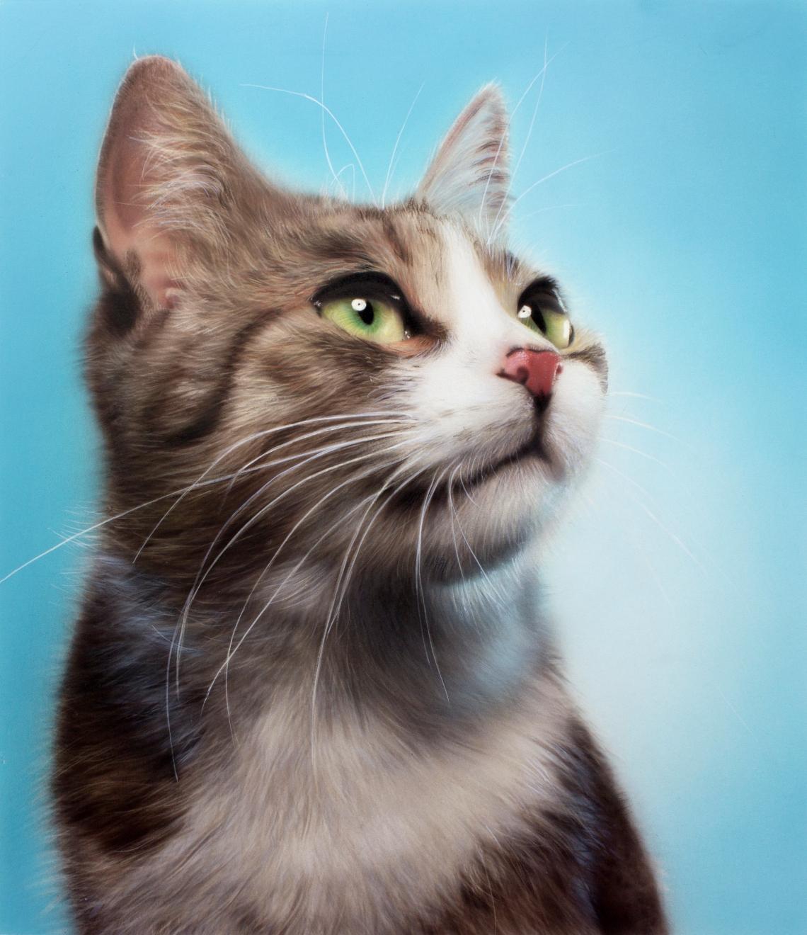 cat_demo